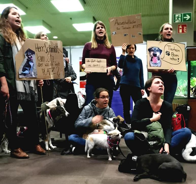 Protest Tierheim Stadthaus